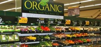 Rezultate experiment: cât costă să mănânci bio o lună?