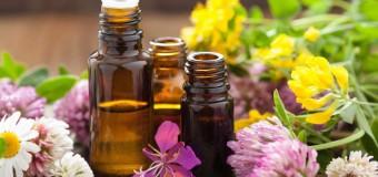 Reteta de spray natural impotriva tantarilor, capuselor, puricilor, paduchilor si plosnitelor
