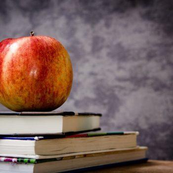 scoala privata vs scoala de stat